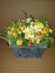 flors6
